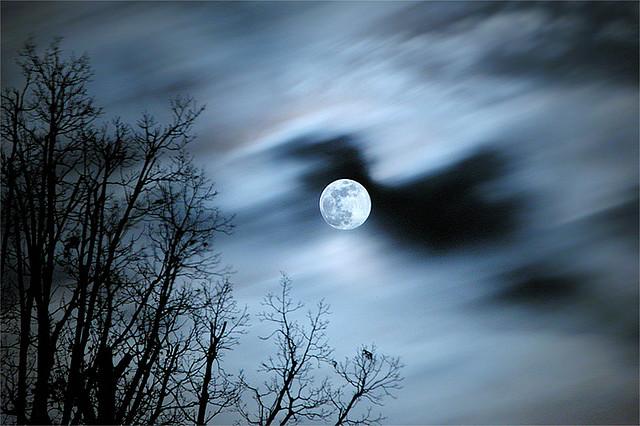 Werewolf moon.jpg