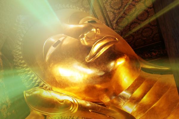 reincarnation buddha